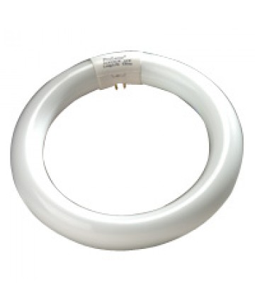 Halco 37501 FC8T9CW 22W FC8 T9 8IN Circline Cool White
