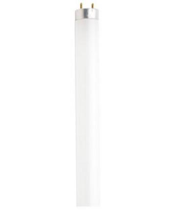 Satco S6478 Satco F72T8/CW 38 Watt T8 72 inch Single Pin Base Cool ...