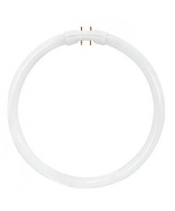 Satco S2955 Satco FPC22/830 22 Watt T5 2 Pin 2GX13 Base 3000K Circline Fluorescent Lamp