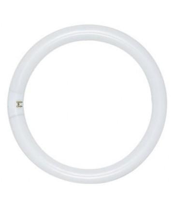 Satco S6505 Satco FC12T9/WW 32 Watt T9 4 Pin Base Warm White Circline Fluorescent Light Bulb