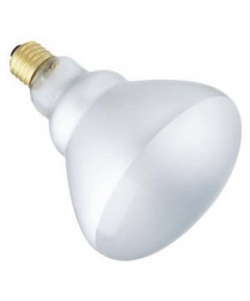 Satco S2853 Satco Light Bulbs 65BR40/FL
