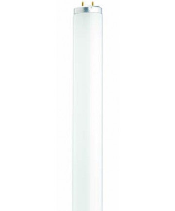 Satco S6566 Satco F20T12/D 20 Watt T12 24 inch Medium Bi Pin Base Daylight Fluorescent Tube/Linear Lamp