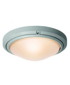 Access Lighting 20356MG-BRZ/FST Oceanus Wet Location Ceiling or Wall Fixture