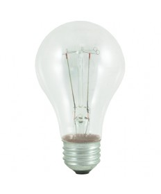 Bulbrite 101025 | 25 Watt Incandescent  A19, Medium Base, Clear