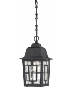 """Nuvo Lighting 60/4933 Banyan 1 Light 11"""" Outdoor Hanging with Clear"""