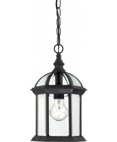 "Nuvo Lighting 60/4979 Boxwood 1 Light 14"" Outdoor Hanging with Clear"