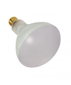 Satco S7004 Satco 300BR40FL 300 Watt BR40 12 Volt E26 Medium Base Frosted 2000 Hour Flood Pool Incandescent Lamp