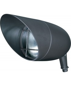 "Nuvo SF76/648 1 Light 13"" Landscape Flood PAR38 Dark Bronze"