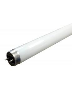Halco 83065 T8FR13/850/DIR/ECO/LED LED ECO T8 13W 5000K Ballast