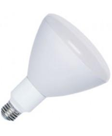 Halco 80136 R40FL18/POOL/12V/LED LED R40 18W 12V 6500K E26 PROLED