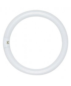Satco S2950 Satco FC6T9/WW 20 Watt T9 4 Pin Base Warm White Circline Fluorescent Light Bulb